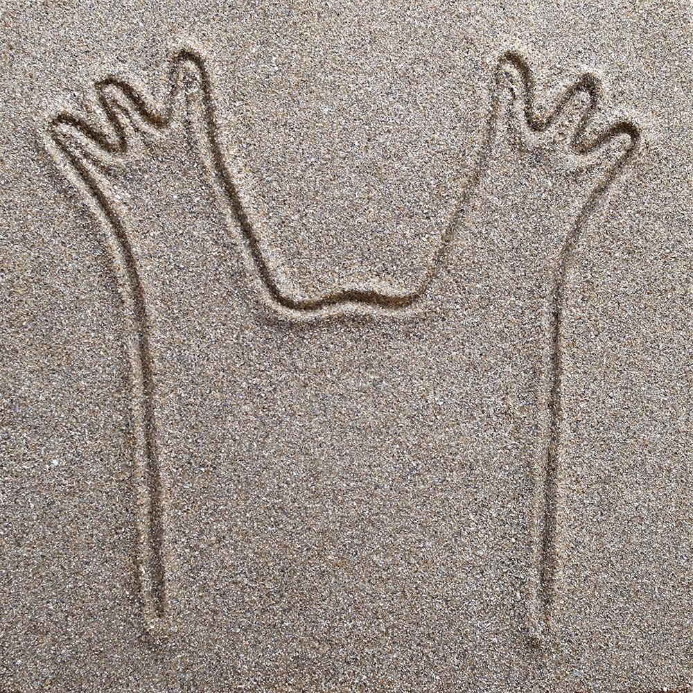 647 Ammoglyphe